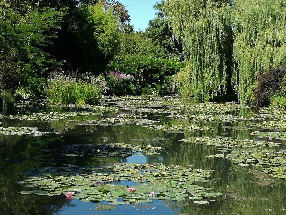 jardin-d'eau-monet-giverny