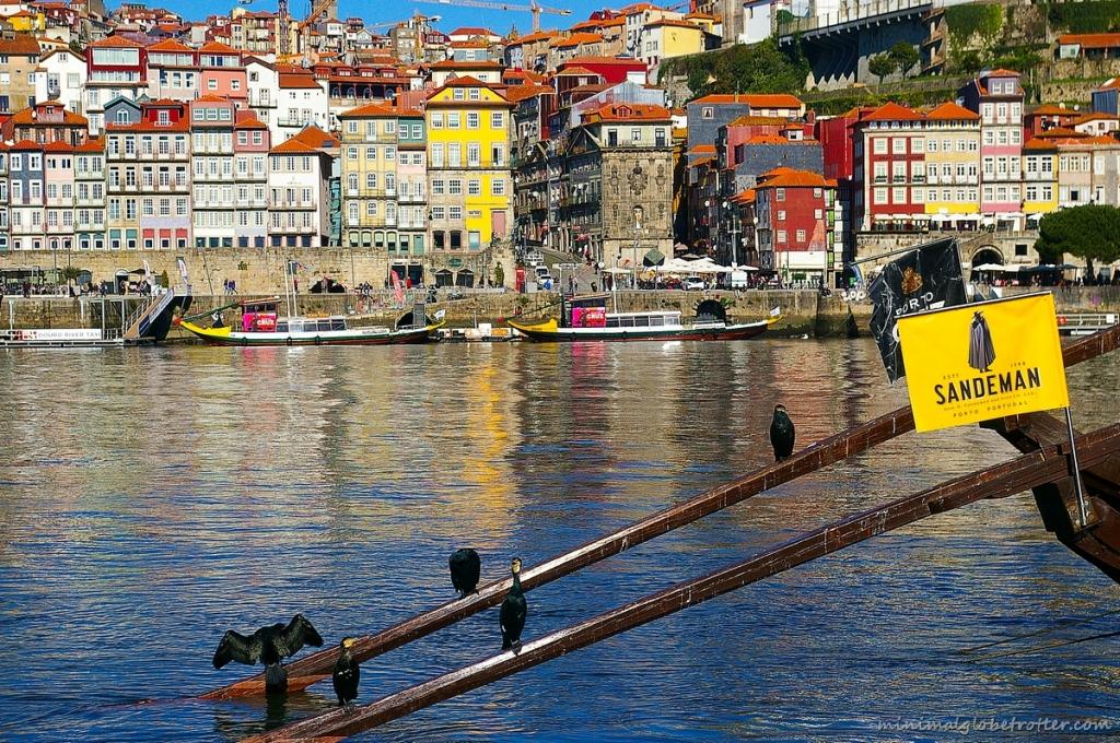 Città di Porto quartiere della Ribeira e fiume Douro